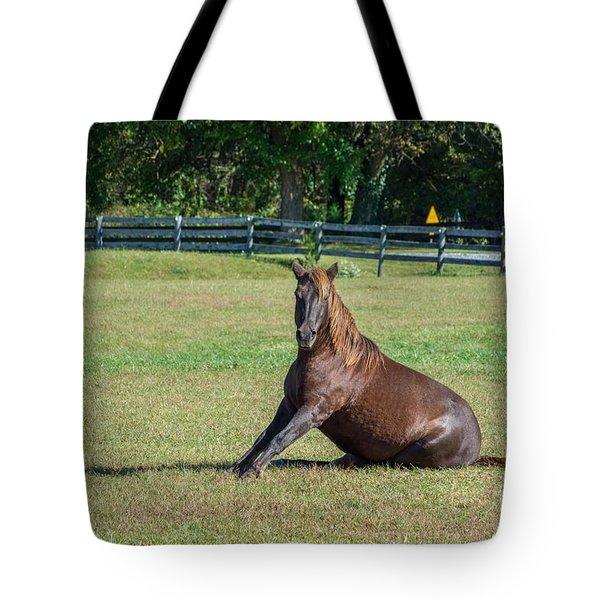 Equestrian Rollick Tote Bag