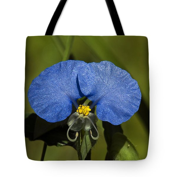 Erect Dayflower  Commelina Erecta Dsmf096 Tote Bag