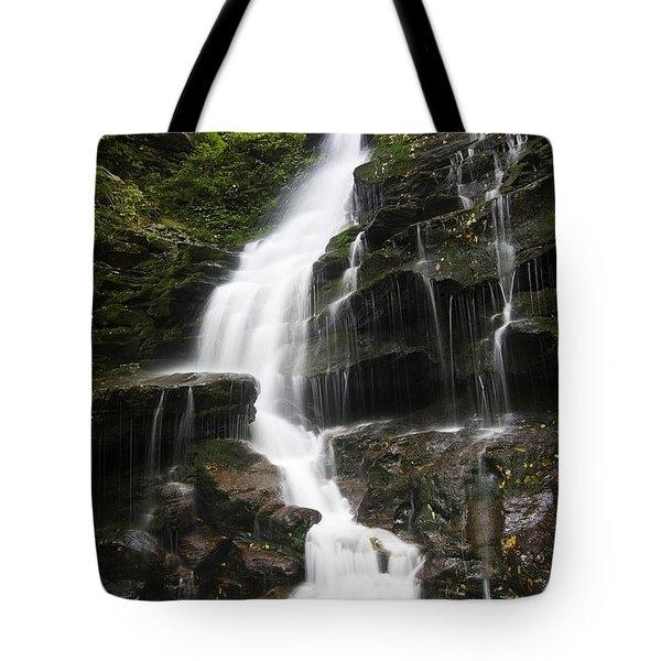 Erie Falls Tote Bag