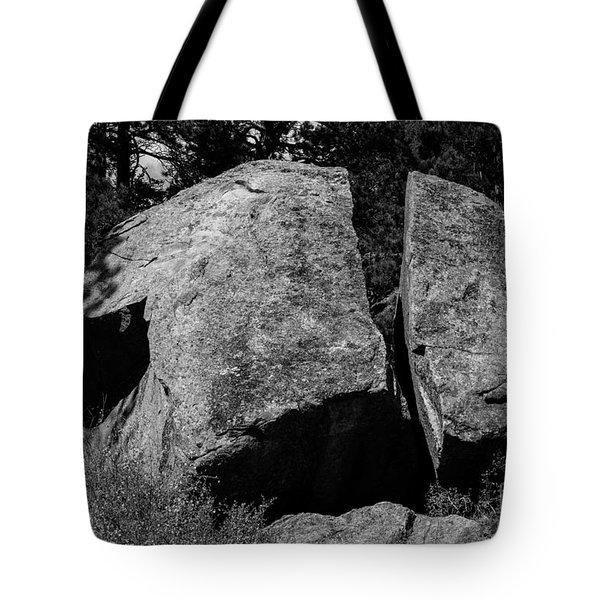 Erratic Tote Bag