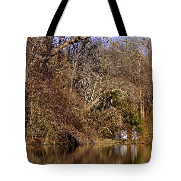 Escape From Reality  Tote Bag by Debra Forand