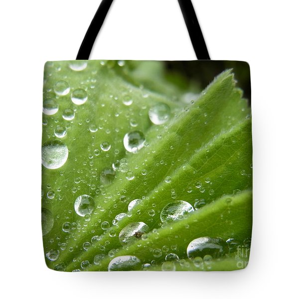 Essence Of Life Tote Bag by Agnieszka Ledwon
