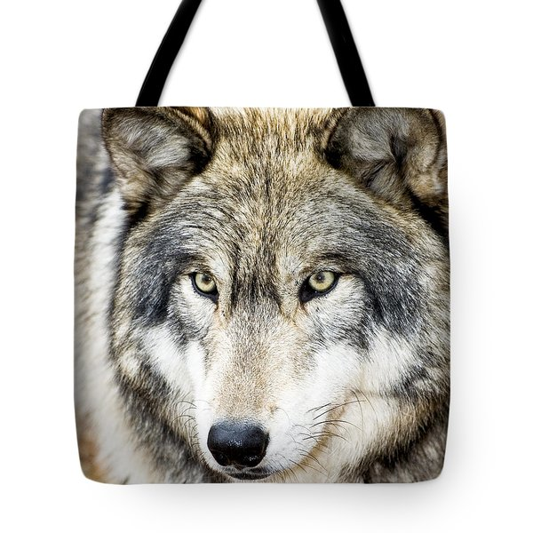 Tote Bag featuring the photograph Essence Of Wolf by Gary Slawsky