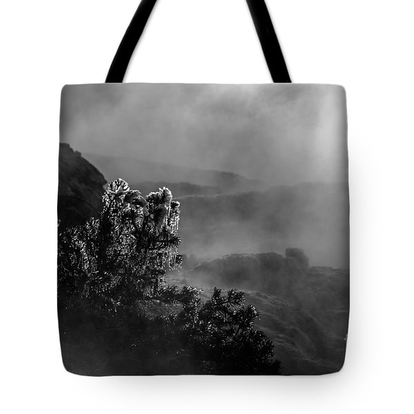 Ethereal Beauty In Black And White Tote Bag