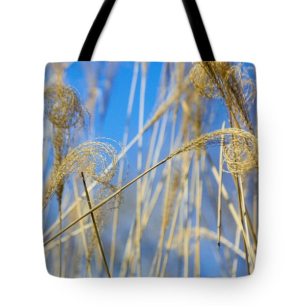 Eulalia Grass Native To East Asia Tote Bag by Anonymous