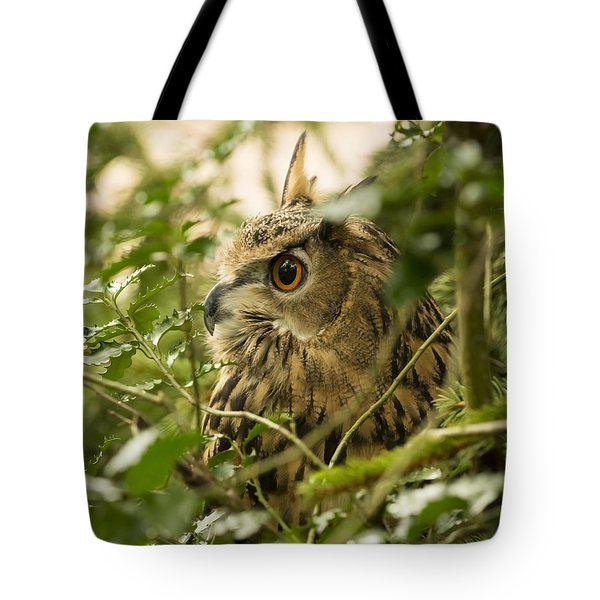Eurasian Eagle-owl 2 Tote Bag