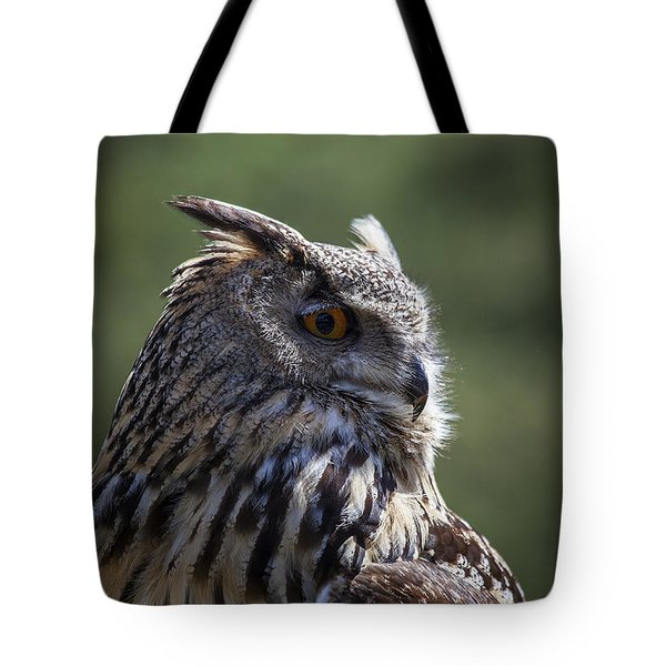 Eurasian Eagle-owl Tote Bag by Garry Gay