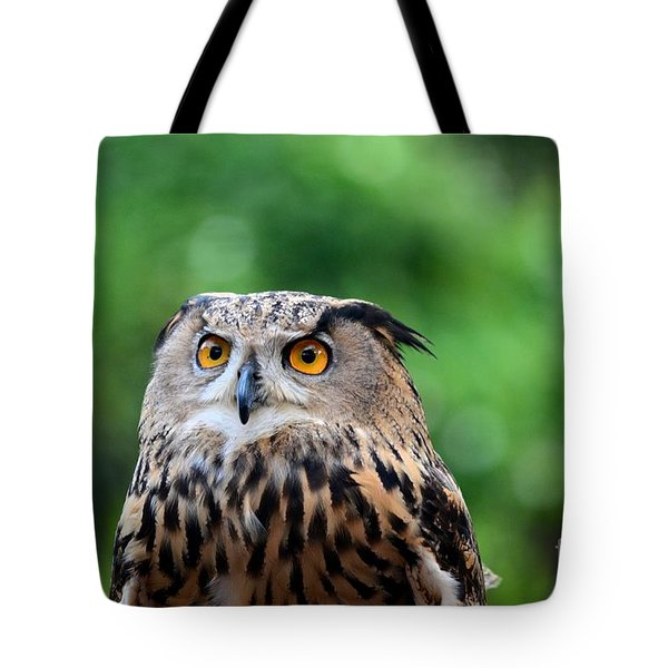Eurasian Or European Eagle Owl Bubo Bubo Stares Intently Tote Bag
