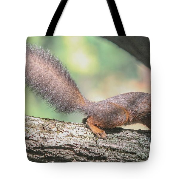 Tote Bag featuring the photograph Euroasian Red Squirrel - Sciurus Vulgaris by Jivko Nakev