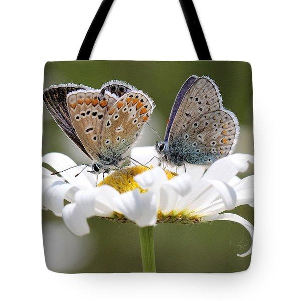 European Common Blue Butterflies Tote Bag by Doris Potter