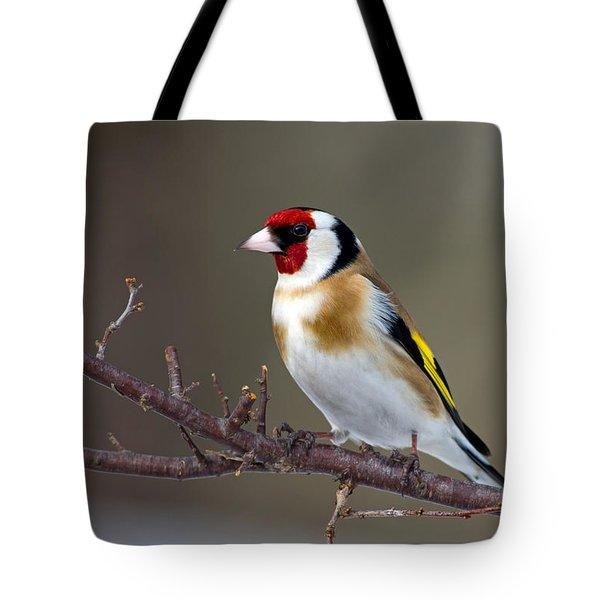 European Goldfinch  Tote Bag by Torbjorn Swenelius