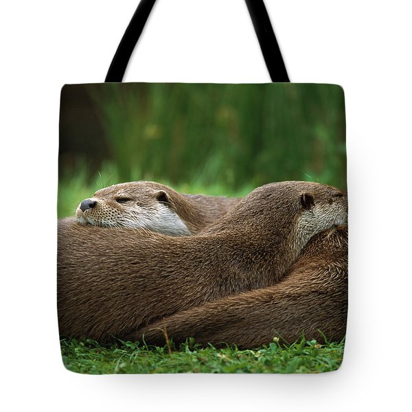 European River Otter Lutra Lutra Tote Bag by Ingo Arndt