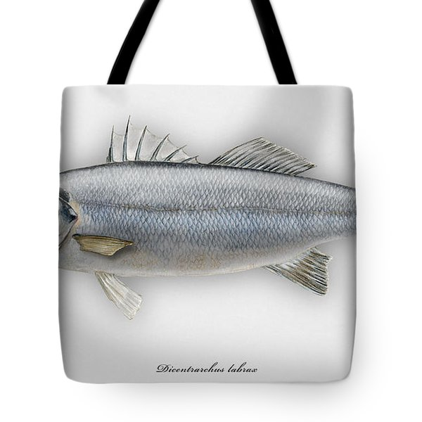 European Seabass Dicentrarchus Labrax - Bar Commun - Loup De Mer - Lubina - Havabor - Seafood Art Tote Bag
