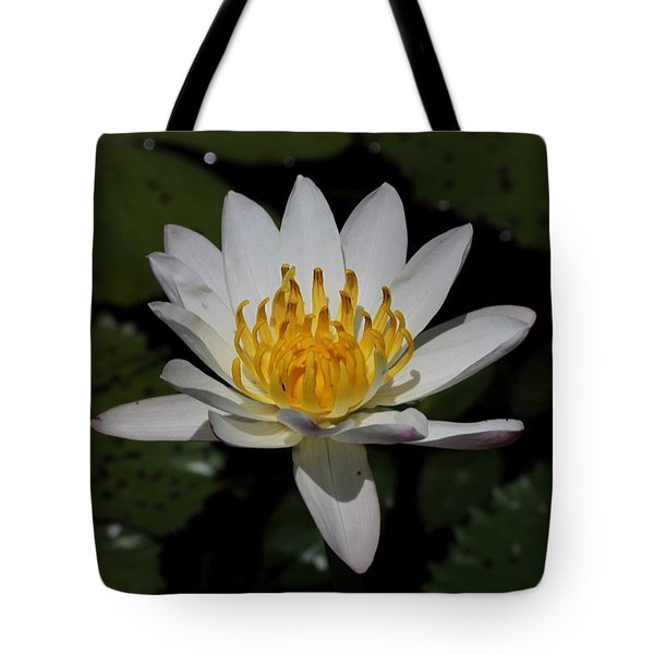 European White Waterlily Tote Bag