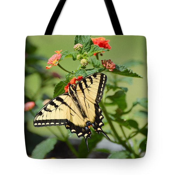 Evening Beauty Tote Bag by Debbie Green
