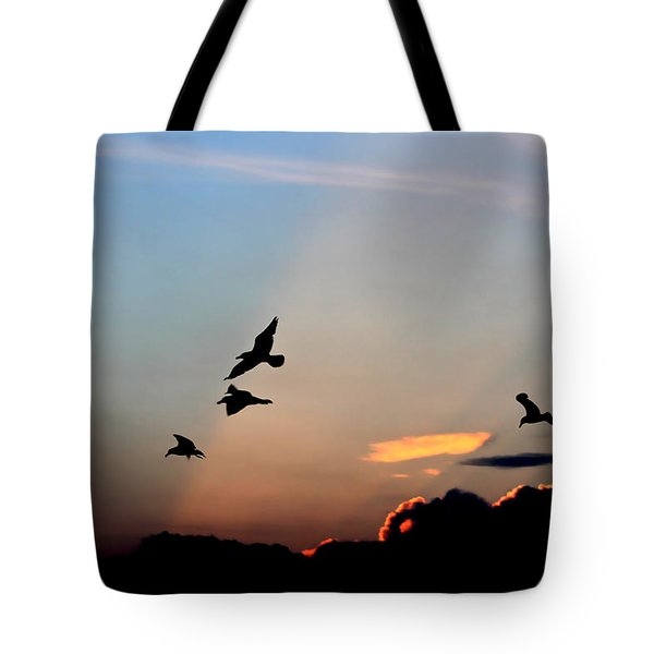 Evening Dance In The Sky Tote Bag by Bruce Patrick Smith