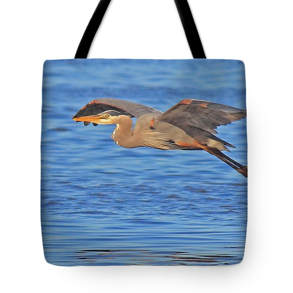 Evening Flight Tote Bag by Randy Hall