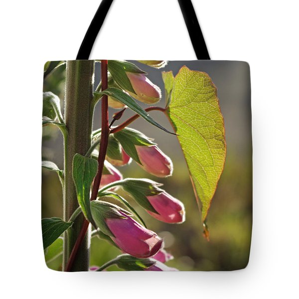 Tote Bag featuring the photograph Evening Foxglove by Adria Trail