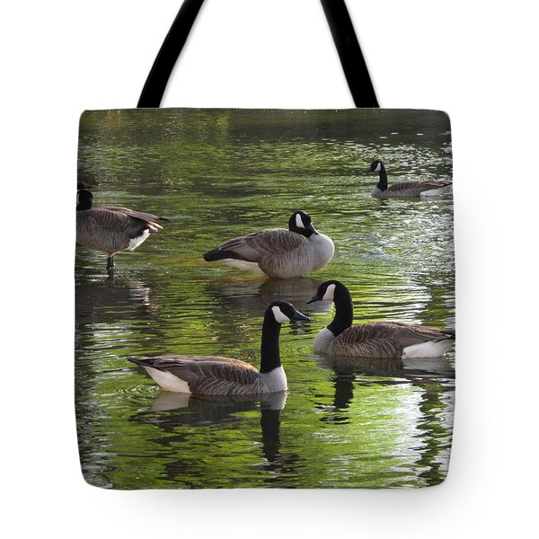 Evening Geese Gathering Tote Bag