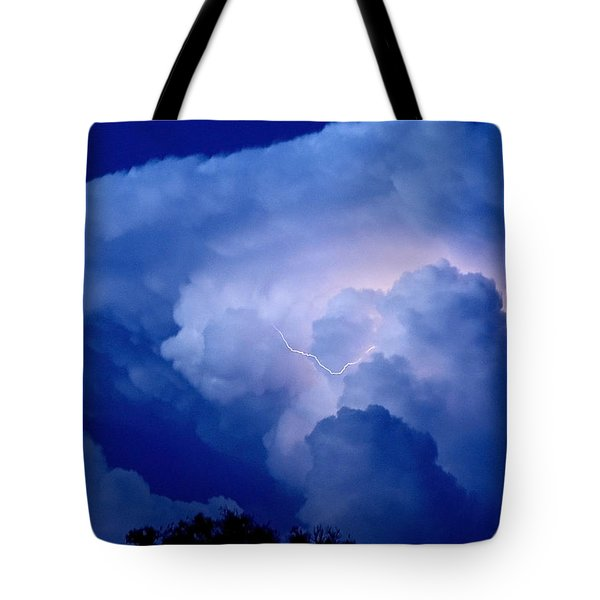 Tote Bag featuring the photograph Evening Giant by Charlotte Schafer