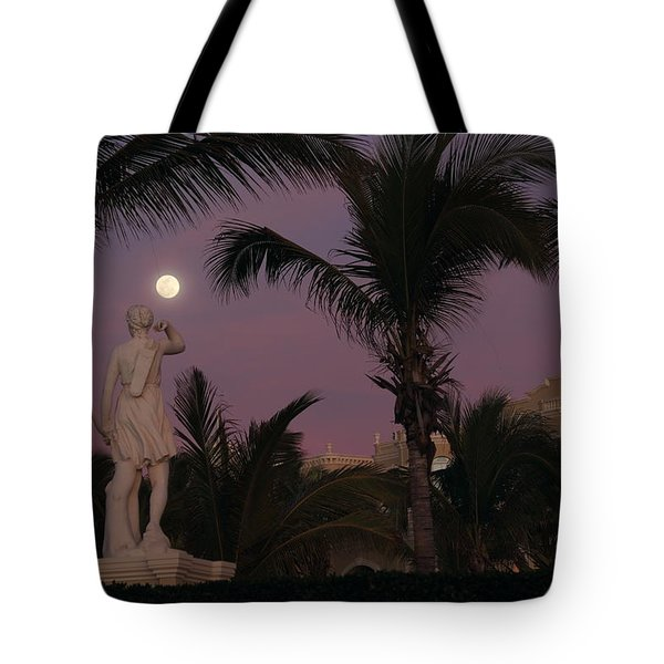 Evening Moon Tote Bag by Shane Bechler