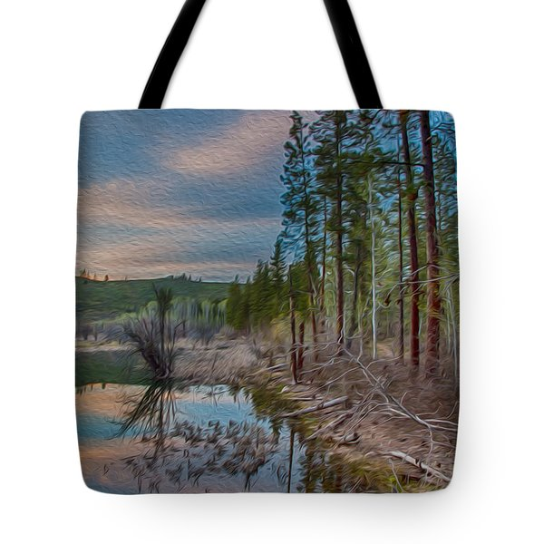 Evening On The Banks Of A Beaver Pond Tote Bag by Omaste Witkowski