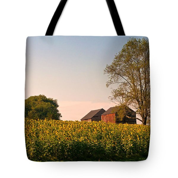 Evening On The Sunflower Farm Tote Bag