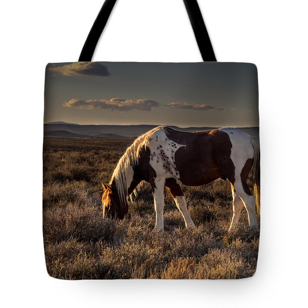 Evening Solitude In Sand Wash Basin Tote Bag