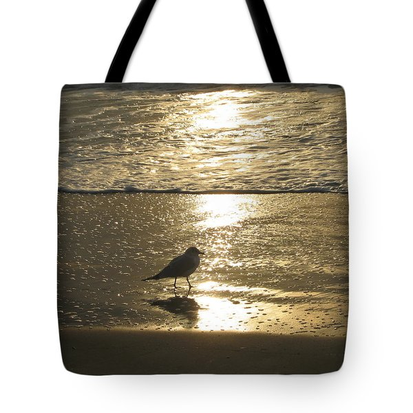 Tote Bag featuring the photograph Evening Stroll For One by Judith Morris