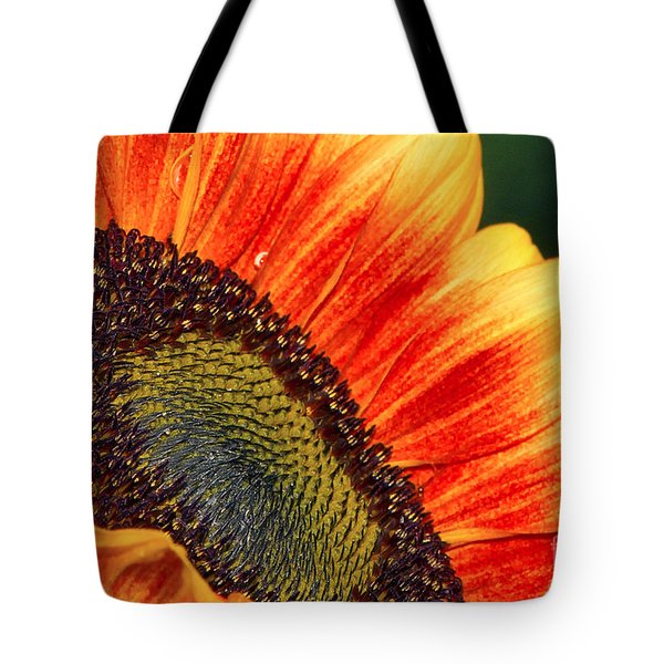 Evening Sun Sunflower Tote Bag by Sharon Talson