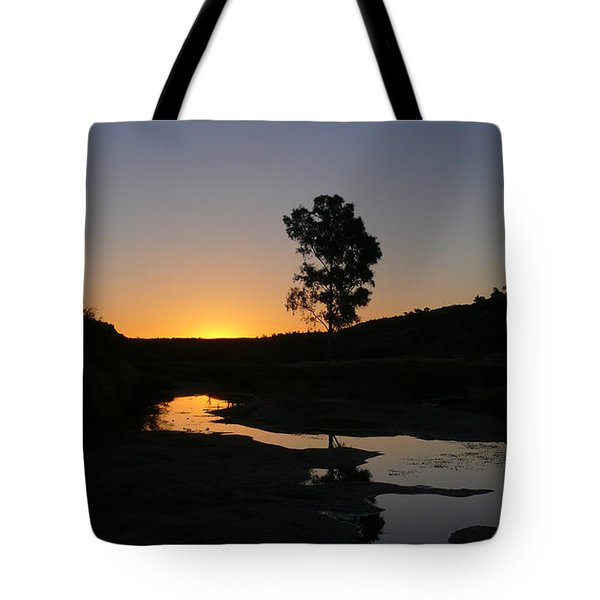 Tote Bag featuring the photograph Evening Wonderland by Evelyn Tambour