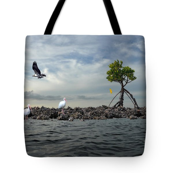 Tote Bag featuring the photograph Everglade Scene by Dan Friend
