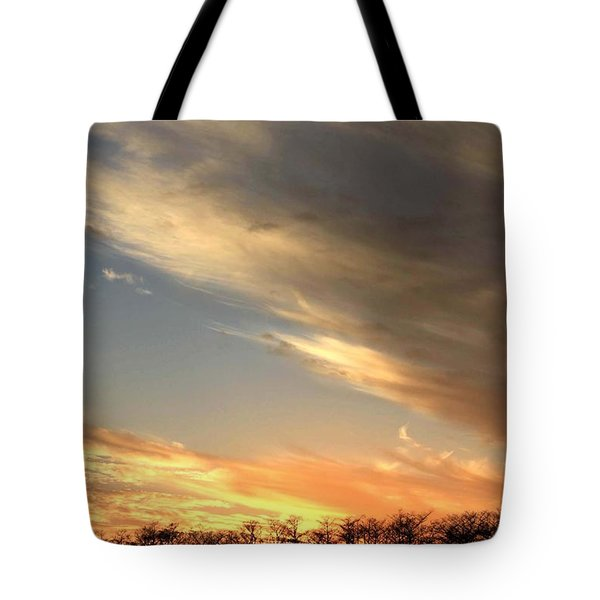 Everglades Clouds Tote Bag by AR Annahita