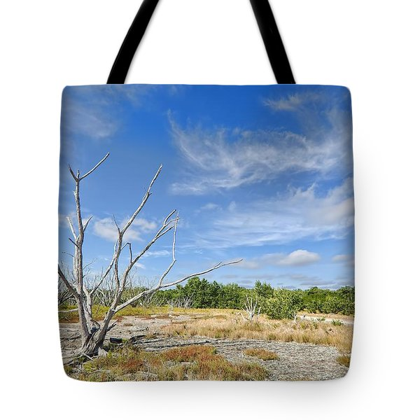 Everglades Coastal Prairies Tote Bag by Rudy Umans