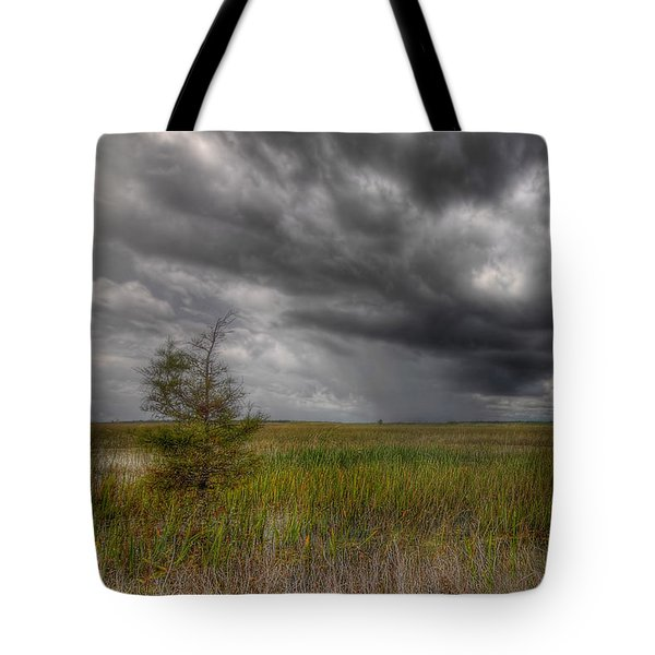 Everglades Storm Tote Bag by Rudy Umans
