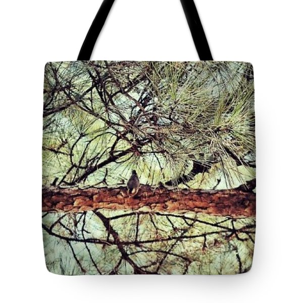 Tote Bag featuring the photograph Evergreen Bird by Tara Potts