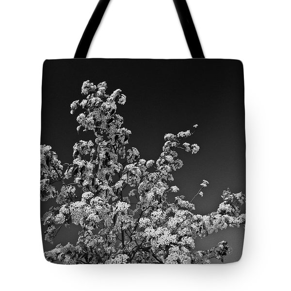 Evergreen Pear Bw Tote Bag