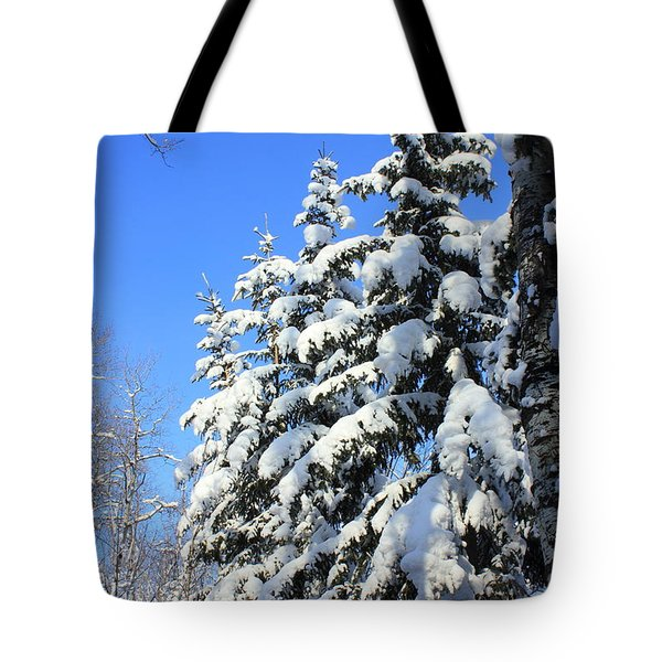 Evergreen Trees In Winter Tote Bag by Jim Sauchyn