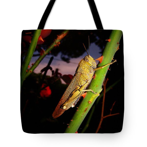 Every Rose Has Its Thorns Tote Bag