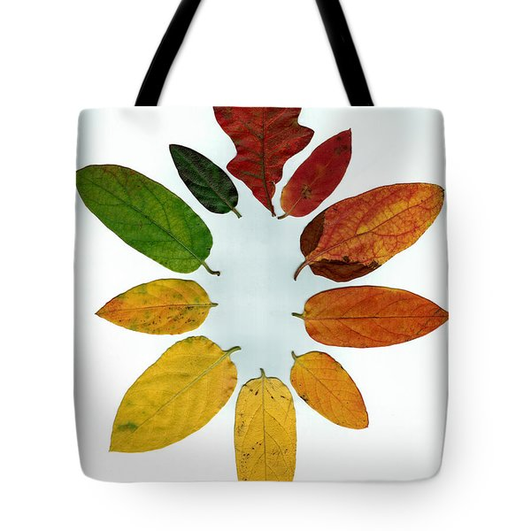 Tote Bag featuring the digital art Evolution Of Autumn Wh by Pete Trenholm