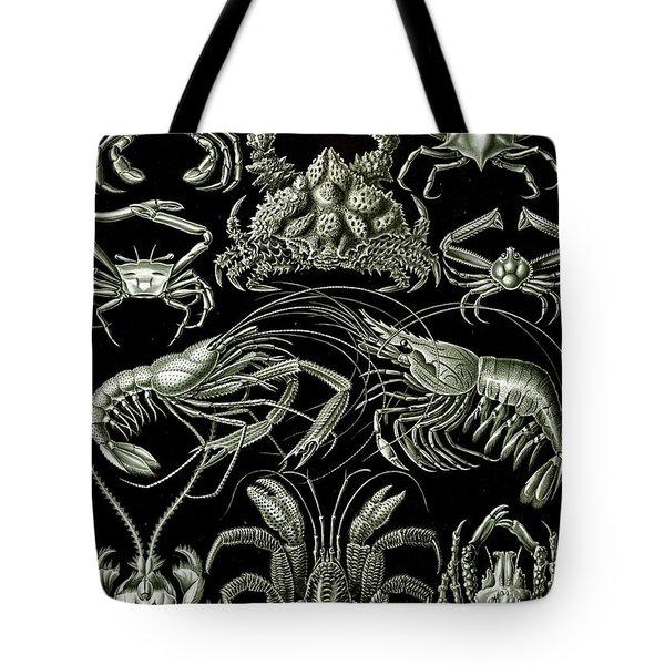 Examples Of Decapoda Kunstformen Der Natur Tote Bag by Ernst Haeckel