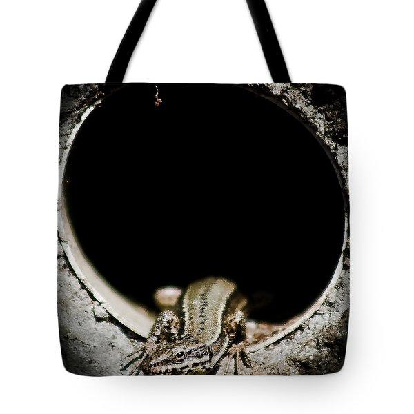 Tote Bag featuring the photograph Exit Of Lizard Devil by Stwayne Keubrick