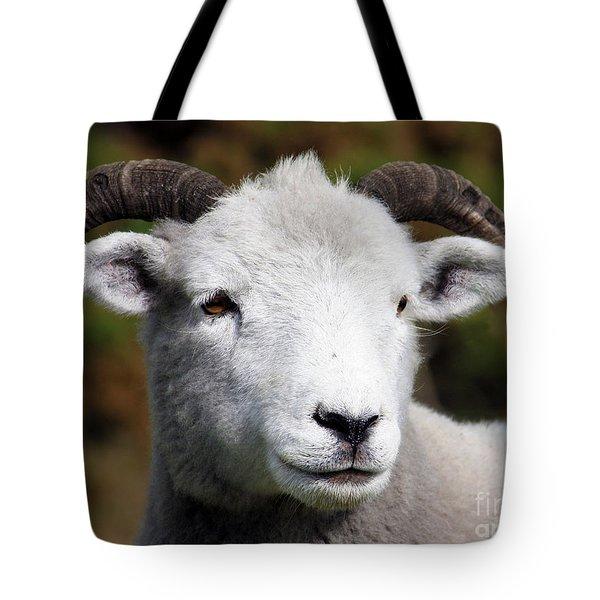 Exmoor Horn Sheep Tote Bag by Terri Waters