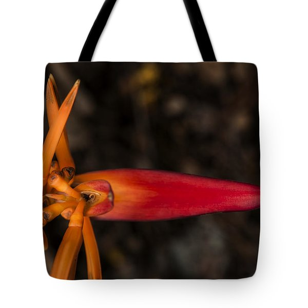 Tote Bag featuring the photograph Exotic Heliconia by Steven Sparks