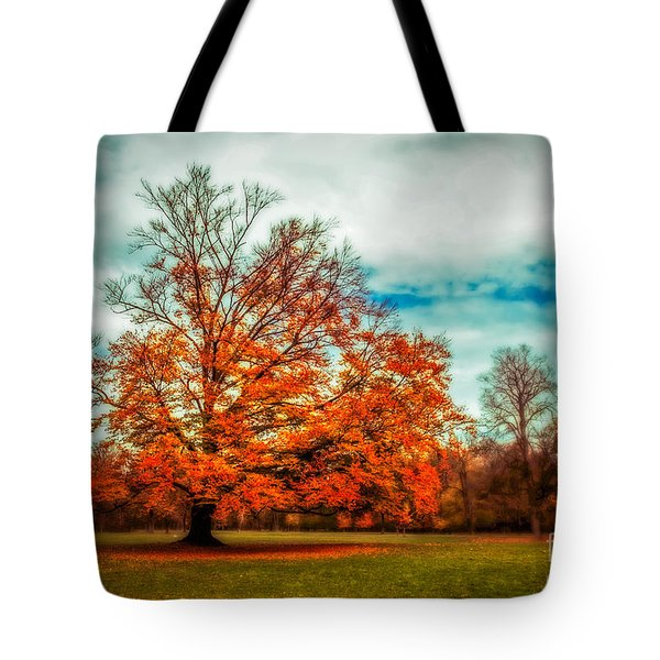 Expecting The Winter Tote Bag by Hannes Cmarits