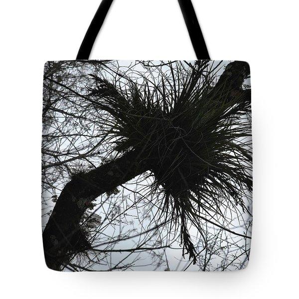 Exploding Branch Tote Bag