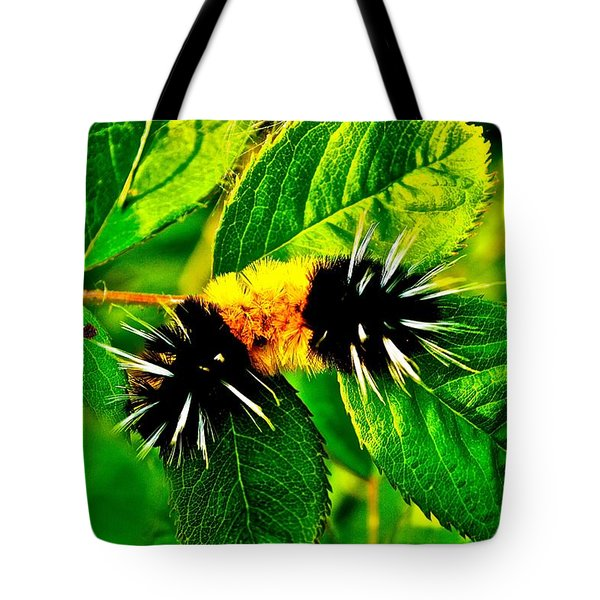 Exploring Possibilities Tote Bag by Jim Hogg