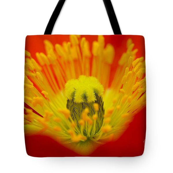 Explosion Of Colour Tote Bag by Carole Lloyd