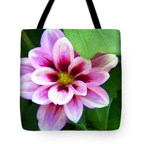 Exquisite Tote Bag by Aimee L Maher Photography and Art Visit ALMGallerydotcom