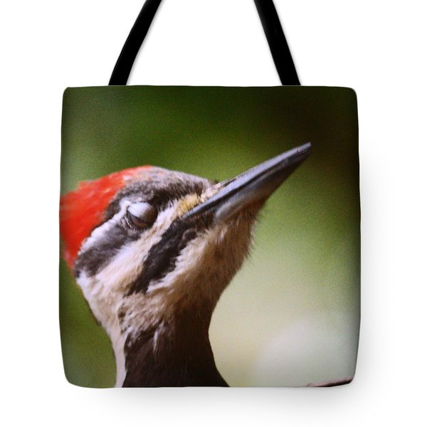Eye Am Getting Very Sleepy Tote Bag by Kym Backland